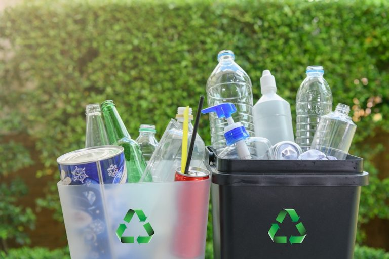 How To Start Recycling and Reduce Waste
